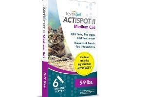 Cat Shampoo for Fleas
